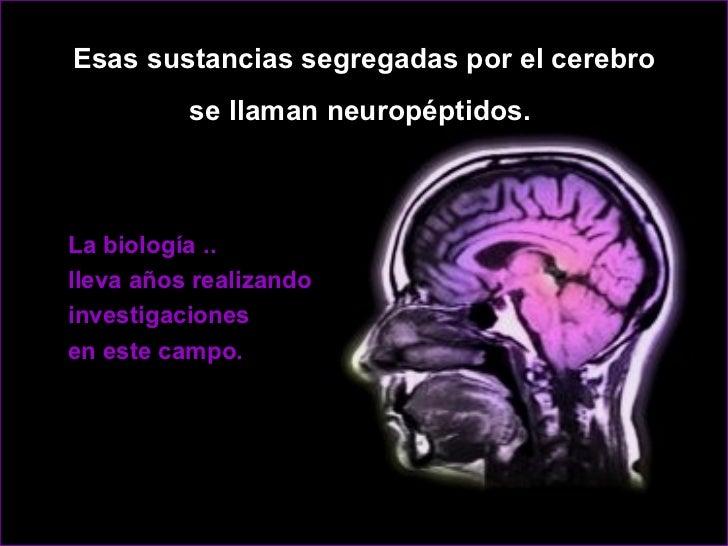 <ul><ul><ul><li>Esas sustancias segregadas por el cerebro </li></ul></ul></ul><ul><ul><ul><li>se llaman neuropéptidos.  </...