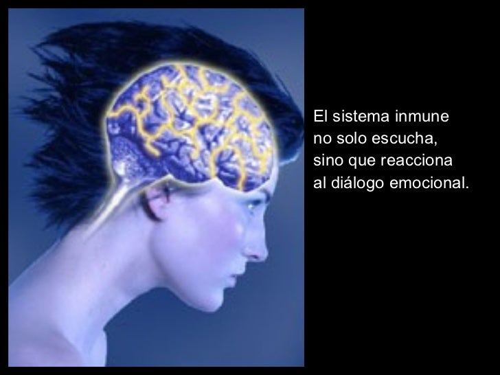 <ul><ul><ul><li>El sistema inmune  </li></ul></ul></ul><ul><ul><ul><li>no solo escucha,  </li></ul></ul></ul><ul><ul><ul><...