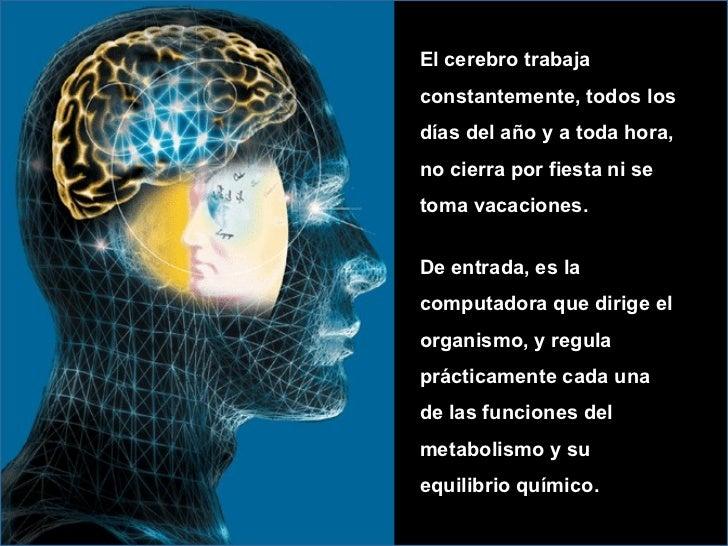 <ul><ul><ul><li>El cerebro trabaja constantemente, todos los días del año y a toda hora, no cierra por fiesta ni se toma v...