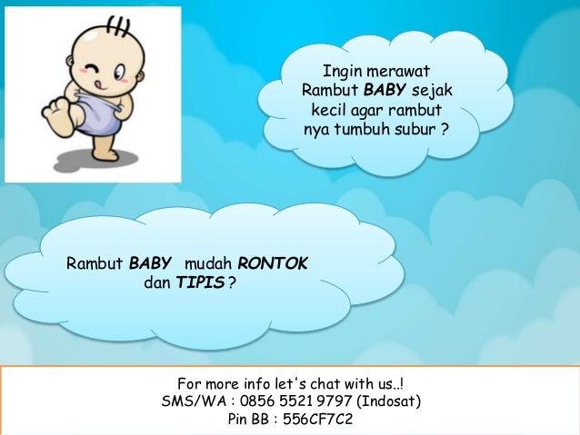 For more info let's chat with us..! SMS/WA : 0856 5521 9797 (Indosat) Pin BB : 556CF7C2 Ingin merawat Rambut BABY sejak ke...