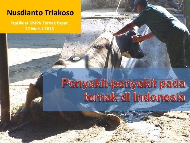 Nusdianto Triakoso PraDiklat KMPV Ternak Besar, 27 Maret 2015