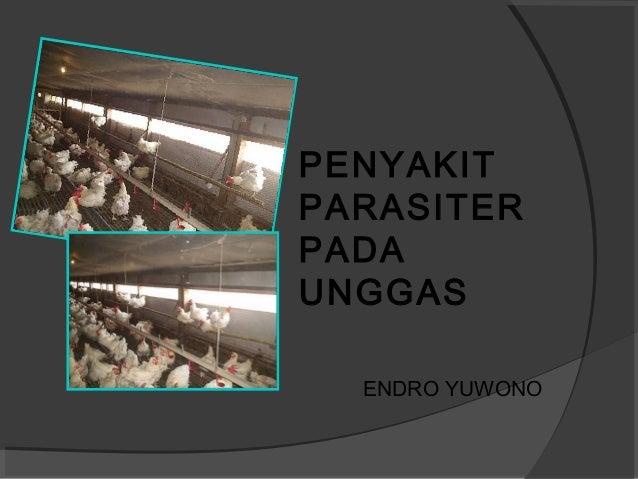 PENYAKIT PARASITER PADA UNGGAS ENDRO YUWONO