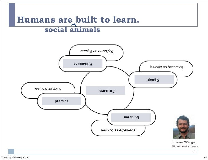 Humans are built to learn.                                 ›❯                           social animals                    ...