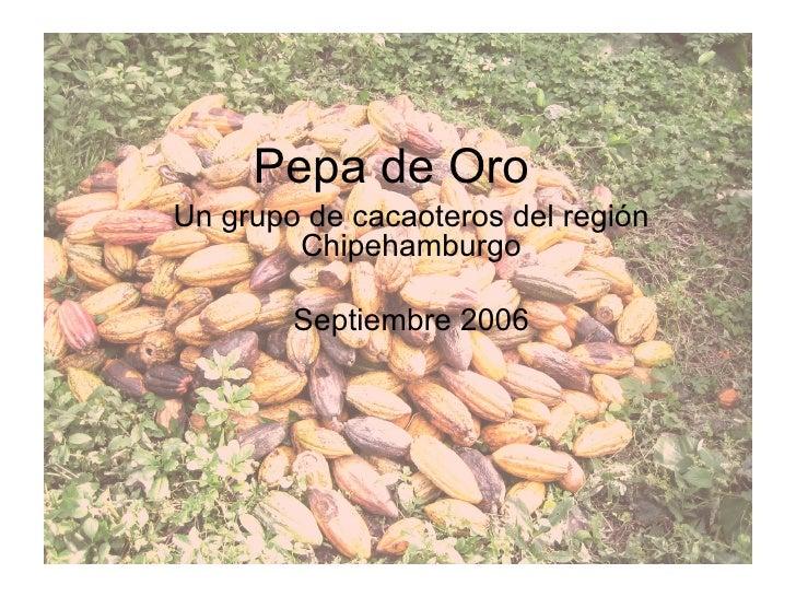 Pepa de Oro Un grupo de cacaoteros del región Chipehamburgo Septiembre 2006