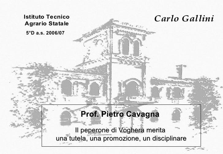 Prof. Pietro Cavagna  Il peperone di Voghera merita  una  tutela, una promozione, un disciplinare 5°D a.s. 2006/07