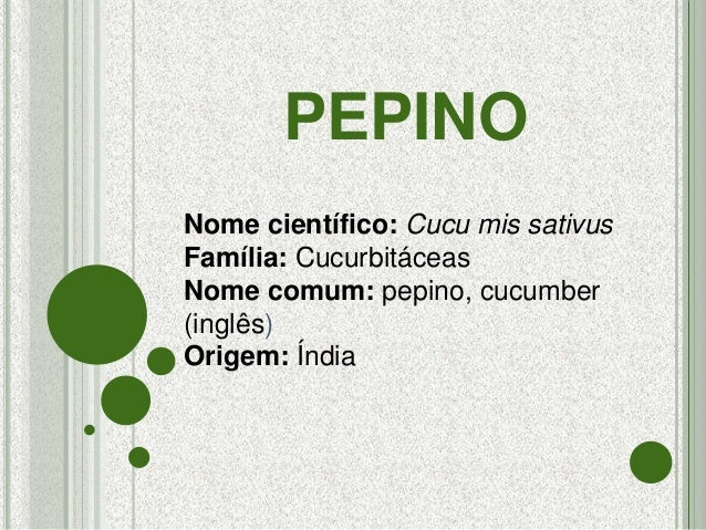 PEPINO Nome científico: Cucu mis sativus Família: Cucurbitáceas Nome comum: pepino, cucumber (inglês) Origem: Índia