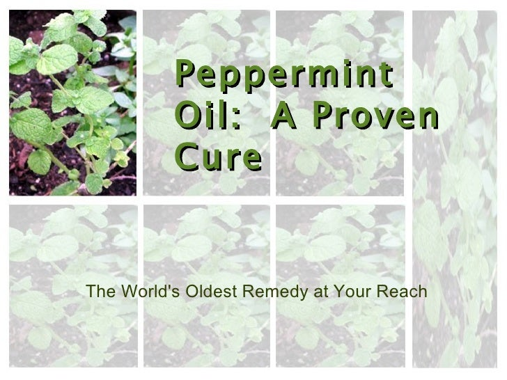 Peppermint Oil:  A Proven Cure The World's Oldest Remedy at Your Reach
