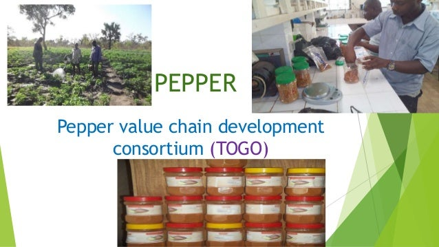 PEPPER Pepper value chain development consortium (TOGO)
