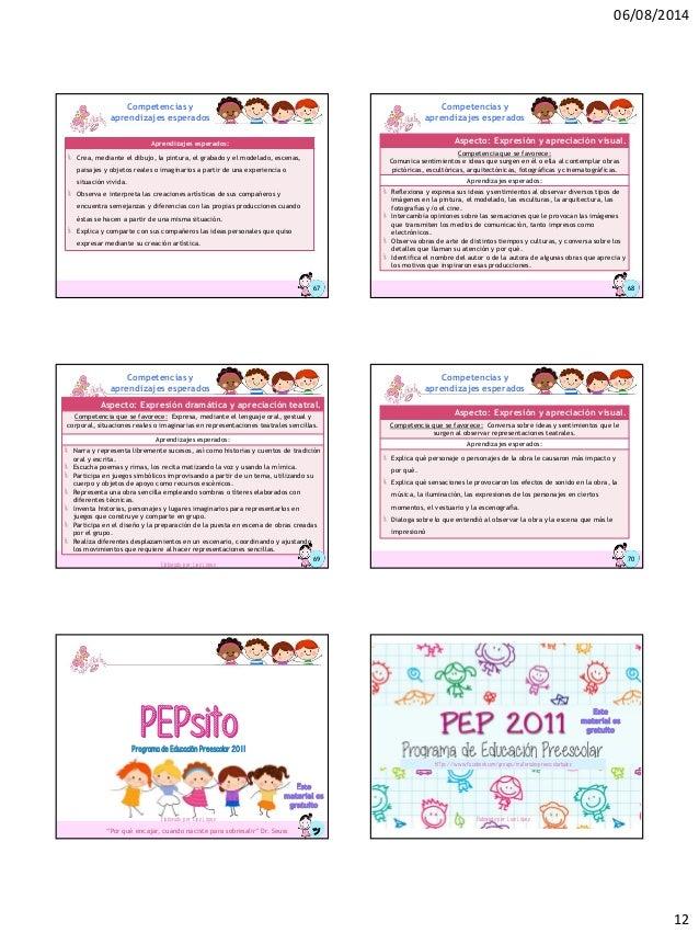 pep 2011 pdf completo descargar gratis