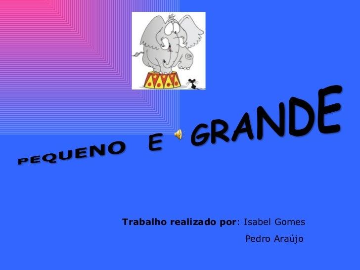 Trabalho realizado por : Isabel Gomes  Pedro Araújo