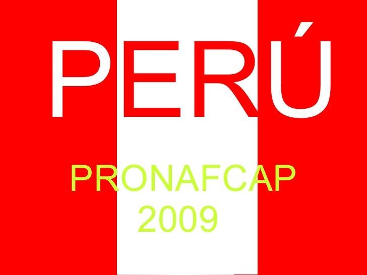 PRONAFCAP 2009  P ER Ú