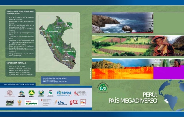 PERÚ: PAÍS MEGADIVERSO El Perú es uno de los diez países megadi- versos en el mundo. • 84 de las 117 zonas de vida del pla...