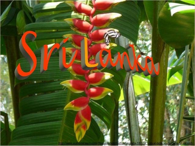 http://www.authorstream.com/Presentation/michaelasanda-1872771-royal-botanic-gardens-sri-lanka3/
