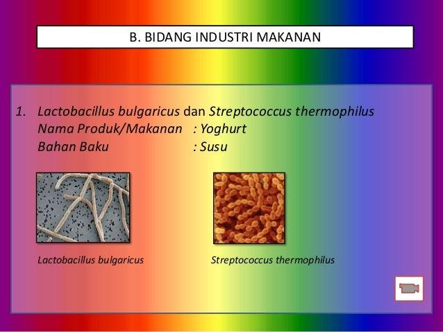 26+ Nama nama bakteri pada makanan ideas in 2021