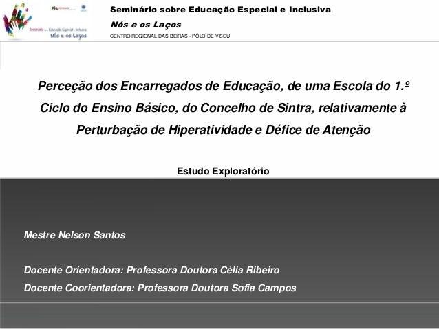 Seminário sobre Educação Especial e Inclusiva                 Nós e os Laços                                 Powerpoint Te...