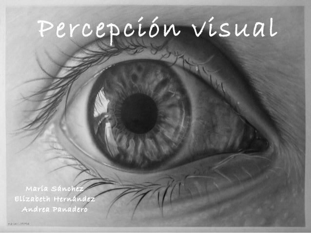 Percepción visual  María Sánchez  Elizabeth Hernández  Andrea Panadero