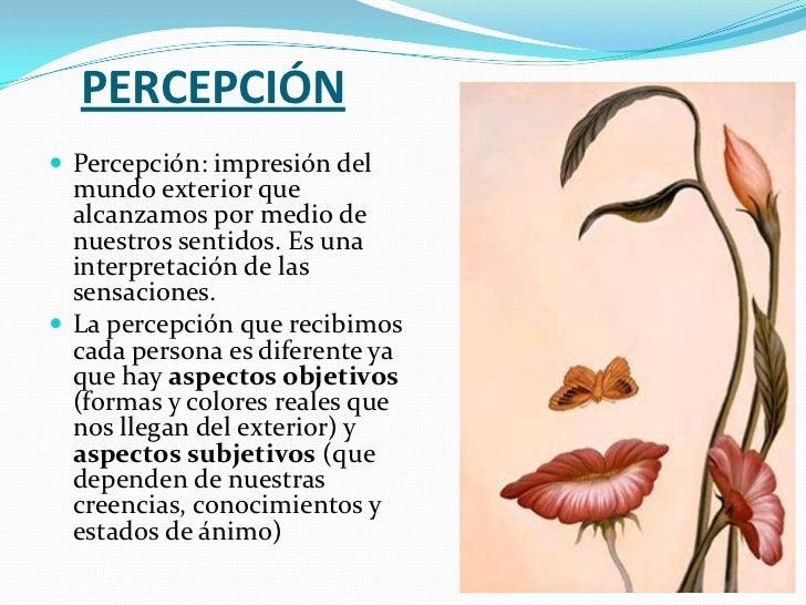 Percepci n visual y observaci n for Interior y exterior de una persona