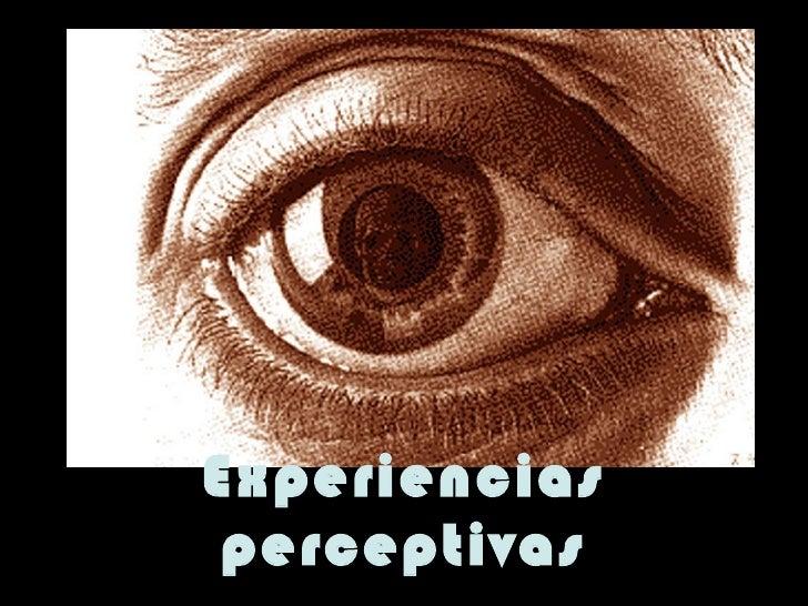 Experiencias perceptivas
