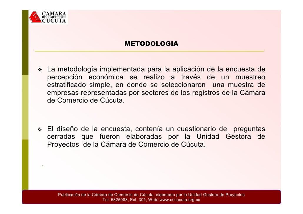 Percepcion Economica 2009 Slide 2