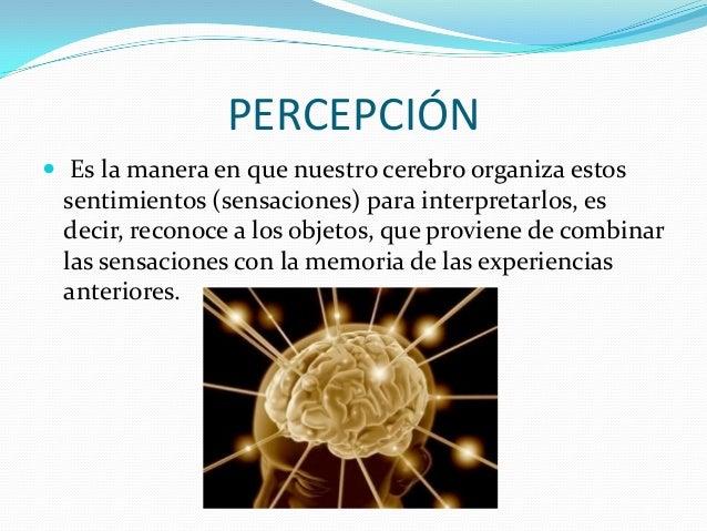 PERCEPCIÓN  Es la manera en que nuestro cerebro organiza estos sentimientos (sensaciones) para interpretarlos, es decir, ...