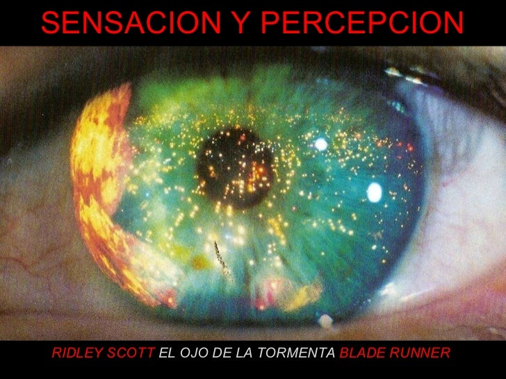 RIDLEY SCOTT   EL OJO DE LA TORMENTA  BLADE RUNNER SENSACION Y PERCEPCION