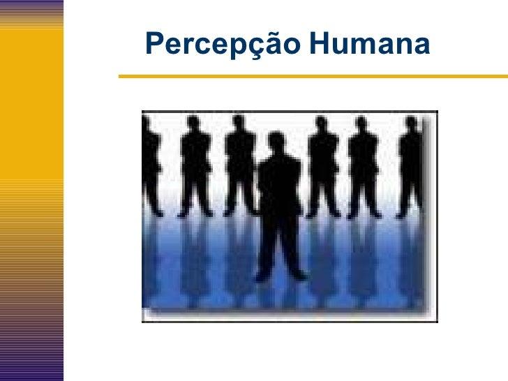 Percepção   Humana