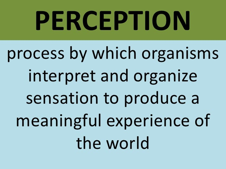 PERCEPTION<br />process by which organisms interpret and organize sensation to produce a meaningful experience of the worl...