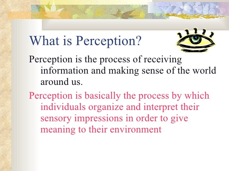 meaning of perception in organisational behaviour