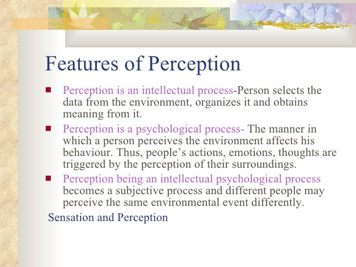 what is the last stage of the perceptual process