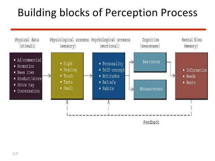 perceptual blocks that influence your views Perceptual blocks the influences (family, teachers, religion, race, environment, and economic level) that have shaped or conditioned my identity by instilling values, beliefs, viewpoints or attitudes that i have accepted without challenge serves as a perceptual block.