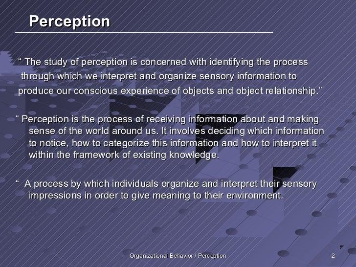 case studies on perception organizational behavior