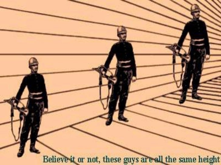 Organizational Behavior / Perception   24