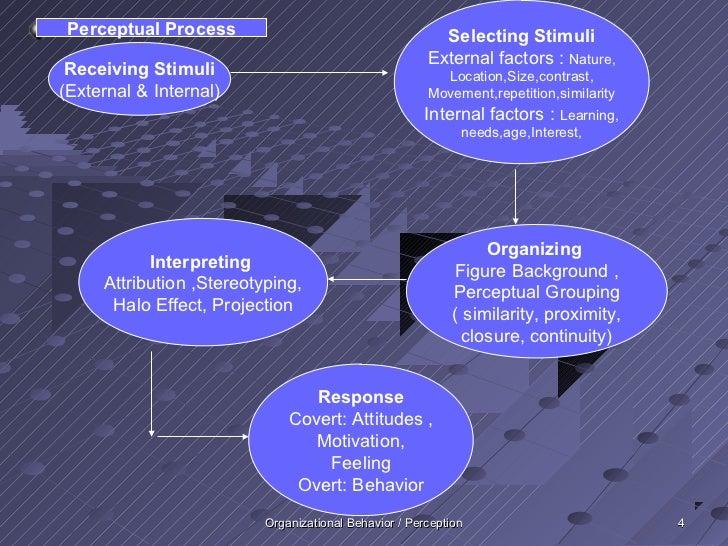 Perceptual Process                                      Selecting Stimuli                                                 ...