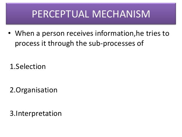 the sub processes of perception Complex process of perception can be simplified for a better understanding so  that main  ying its functionality, some sub-processes.