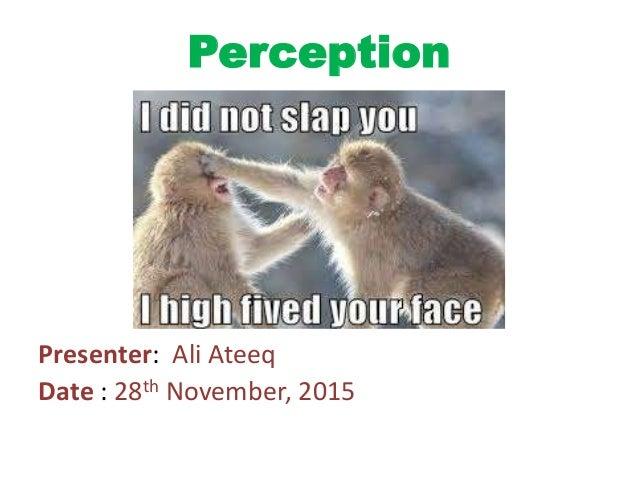 Perception Presenter: Ali Ateeq Date : 28th November, 2015