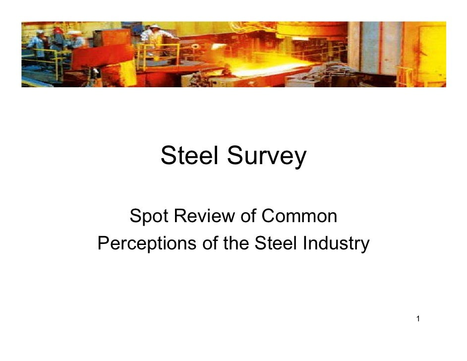 Steel Survey     Spot Review of Common Perceptions of the Steel Industry                                       1