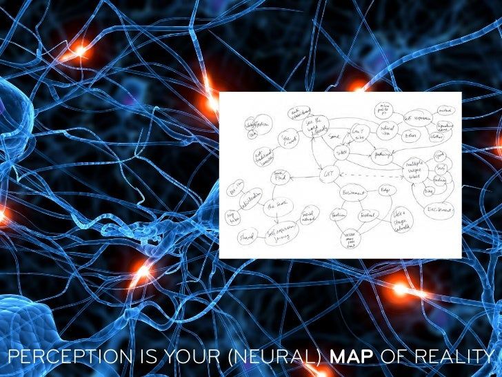 PERCEPTION IS YOUR (NEURAL) MAP OF REALITY