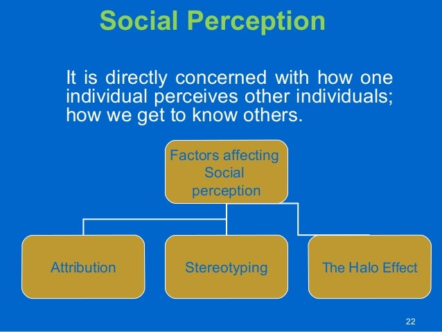 perception and societal factors