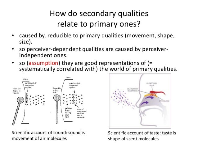 How do secondary qualities relate to primary ones? • caused by, reducible to primary qualities (movement, shape, size). • ...