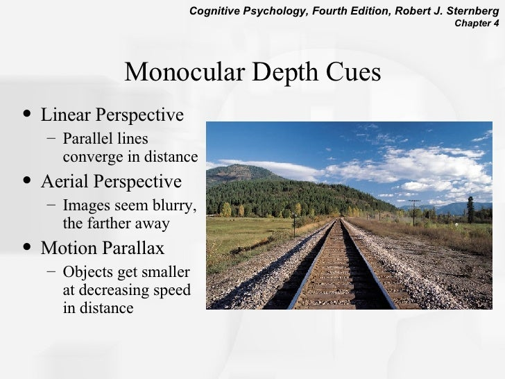 monocular cues essay psychology Free essays psychology psychology the use of depth perception in advertising: local and international scenario i the use of depth perception in advertising: local and international.