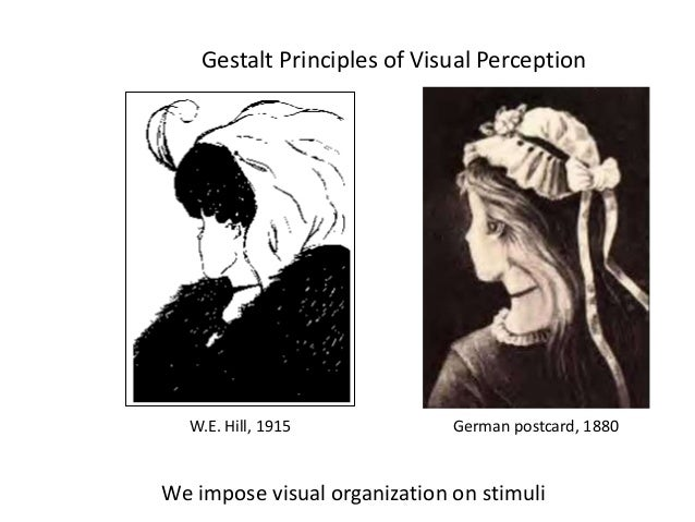 Perception and its process