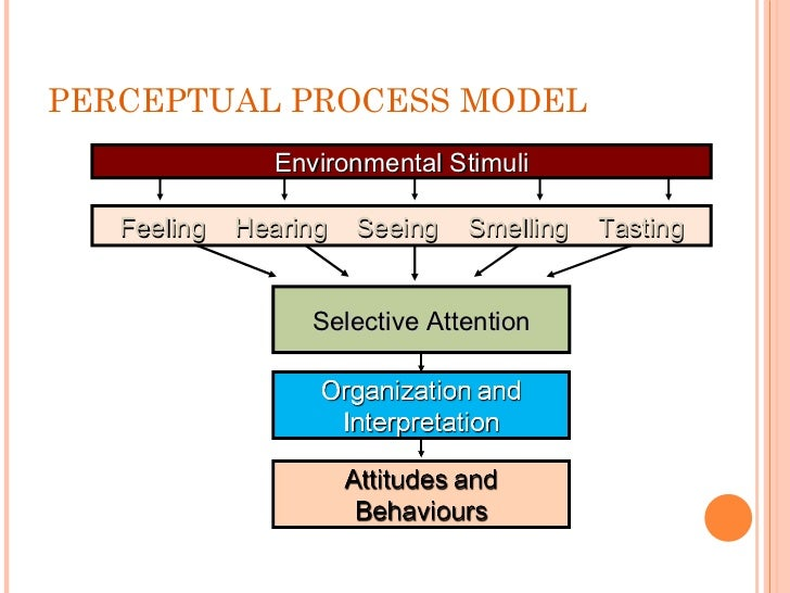 describe the process of selective attention Issues arising from selective attention at the workplace  5 described selective attention as it is refers to the process by which organisms focus on task.