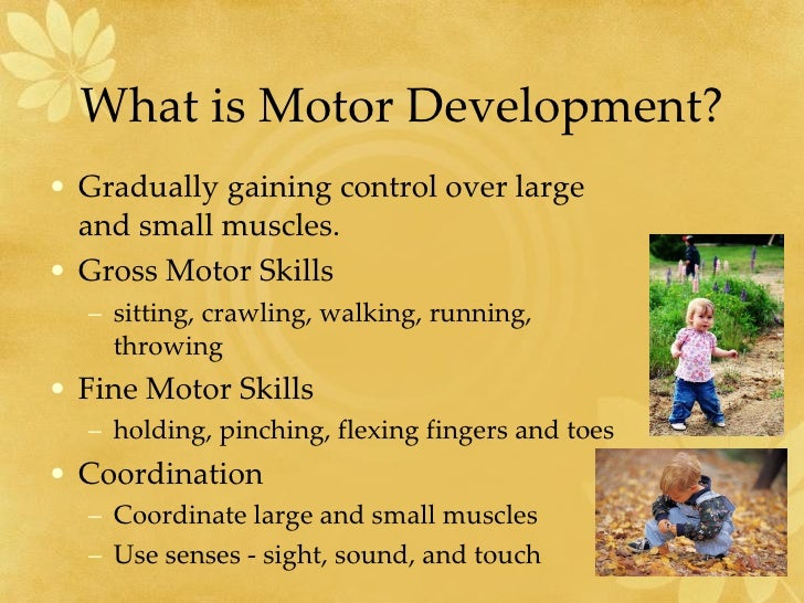 Perceptual and motor skills for What is motor development