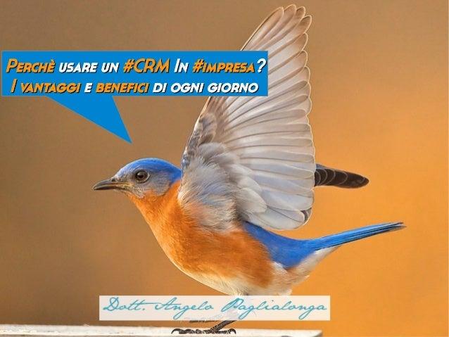 Tra siti web,Perchè usare un #CRM In #impresa?      blog, adwords,I vantaggi e benefici di ogni giorno       social...    ...