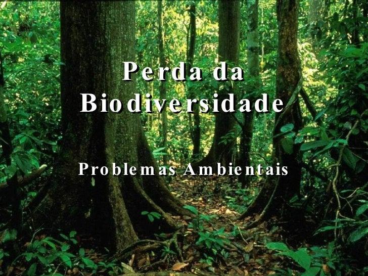 Perda da Biodiversidade Problemas Ambientais