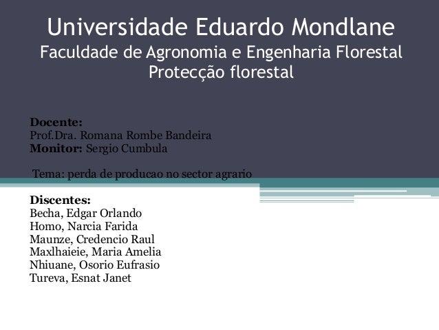 Universidade Eduardo Mondlane Faculdade de Agronomia e Engenharia Florestal Protecção florestal Docente: Prof.Dra. Romana ...