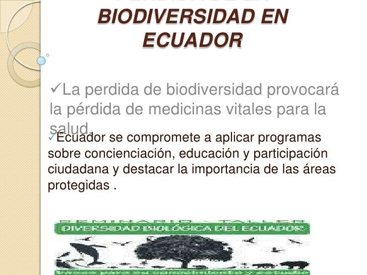 PERDIDA DE LA BIODIVERSIDAD EN ECUADOR<br /><ul><li>La perdida de biodiversidad provocará la pérdida de medicinas vitales ...