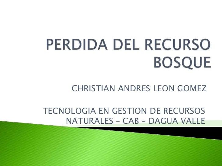 PERDIDA DEL RECURSO BOSQUE<br />CHRISTIAN ANDRES LEON GOMEZ<br />TECNOLOGIA EN GESTION DE RECURSOS NATURALES – CAB – DAGUA...