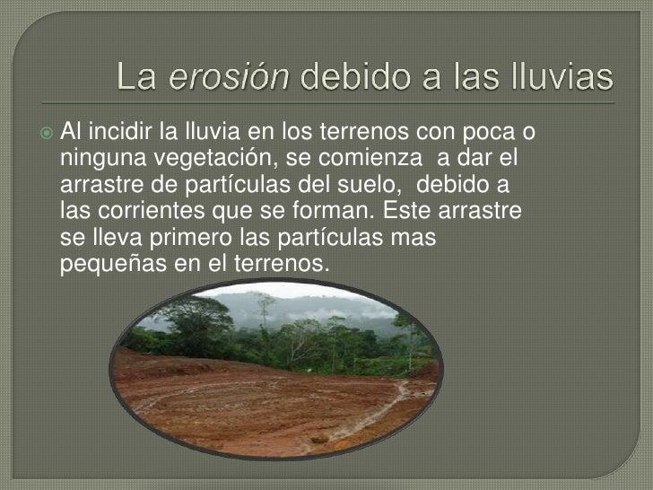 Perdida de minerales del suelo por la lluvia for Cuales son las caracteristicas del suelo