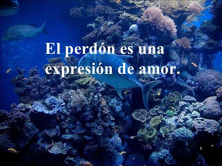 El perdón es una expresión de amor. Visita:  http:// www.RenuevoDePlenitud.com